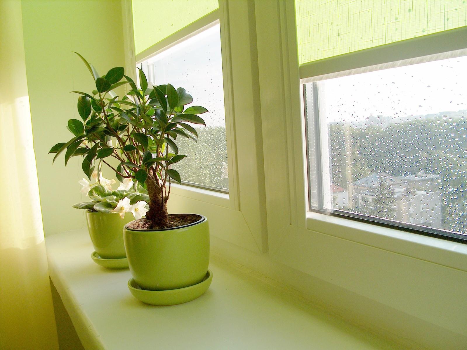Nastavenie okien